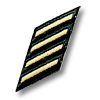 File:Service Stripes.png
