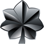 File:202-80px-lieutenant colonel insignia.png