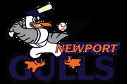 4048 newport gulls-primary-2001