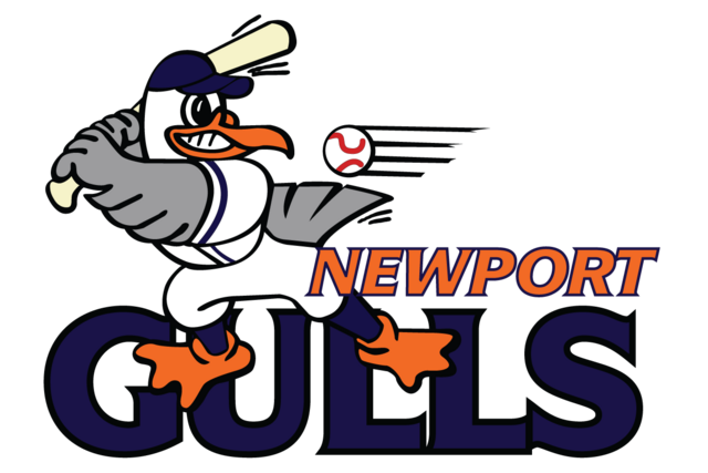 File:4048 newport gulls-primary-2001.png
