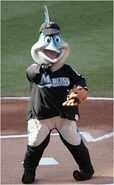 Billy the Marlin 1
