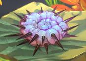 Pincushion pink