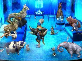 Kaffaljidhma complete animal room