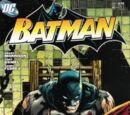 Batman Issue 674