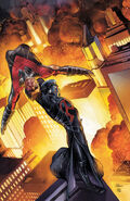 Nightwing Vol 3-12 Cover-1 Teaser