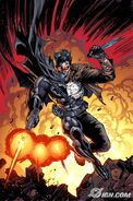 Batman-battle-for-the-cowl-20090508050107103