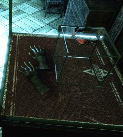 File:Closecat1--article image.jpg