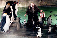 BR The Penguin with Penguins