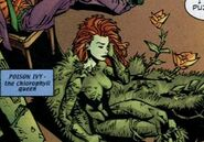 Justice Leagues Ivy