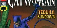 Catwoman (Volume 2) Issue 87