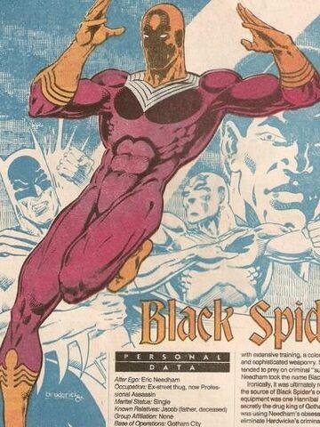 File:Black Spider.jpg