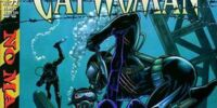 Catwoman (Volume 2) Issue 72