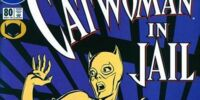 Catwoman (Volume 2) Issue 80