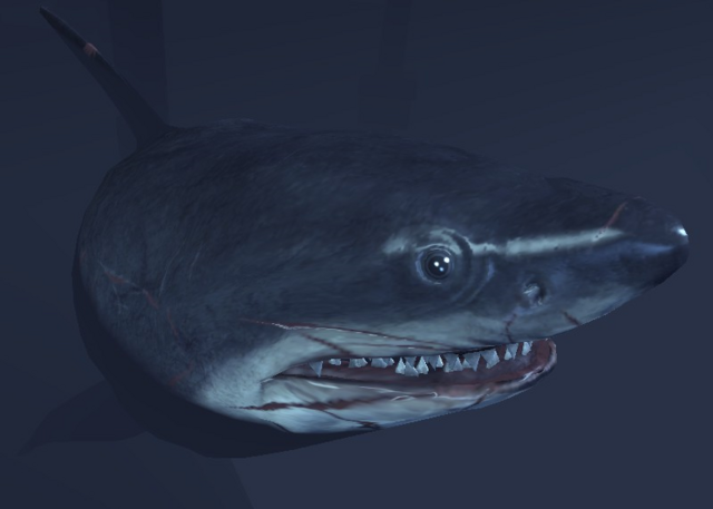 File:SharkArkham1.PNG