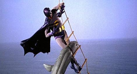 Archivo:SharkBite.jpg
