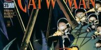 Catwoman (Volume 2) Issue 35