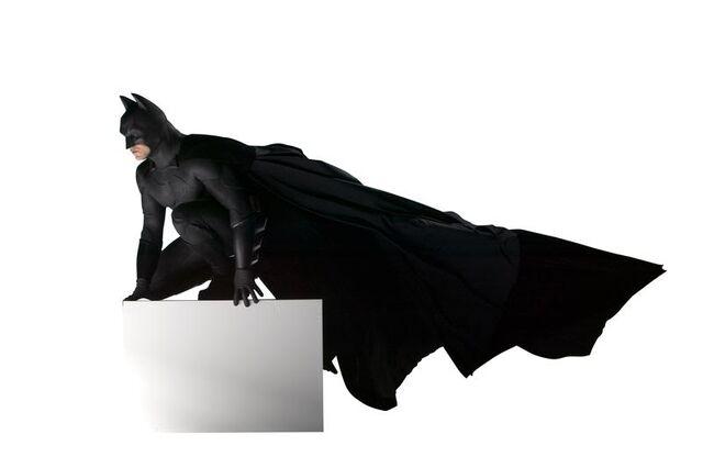 File:BatsBegins4.jpg