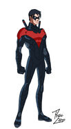 NightwingMain