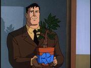 EY 80 - Bruce Wayne
