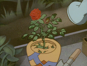 PP 06 -Wild Thorny Rose