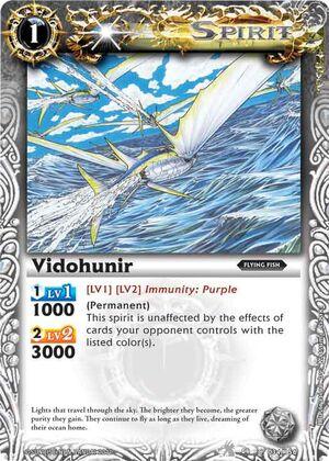 Vidohunir2