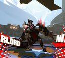 Warlord Nix