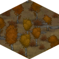 Autumn Woods.png