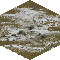 File:Tundra.png