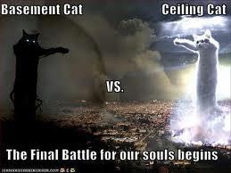 File:BAsement cat vs Roof cat.jpg
