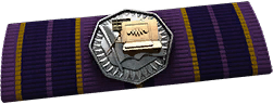 File:BF4 Chainlink Ribbon.png