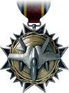 Air Warfare Medal.jpg