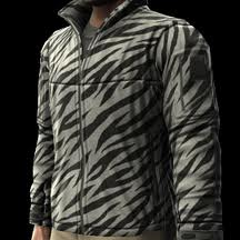 File:Zebra.jpg