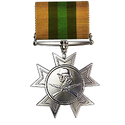 File:Legion of Blood Medal.png