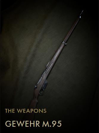 File:Gewehr M95 Codex Entry.png