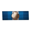 Newtonian Ribbon of Military Merit