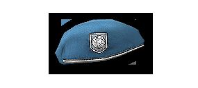 File:World Force Beret.png