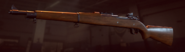 BFHL M1903 model