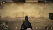 BFP4f MP412 Sight
