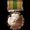 Order of Icarus Medal
