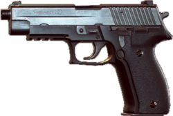 Bfhl p226.png