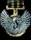 Scavenger medal.png