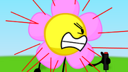 Flowerisoutatfourvotes