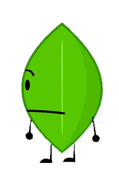 File:Leafy 17.png