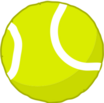 Tennis Ball Bottom