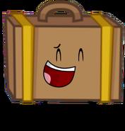 Suitcase ML