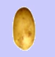 Potato Idol