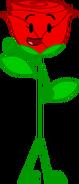 Rose (BFTC)