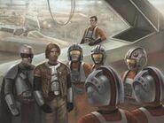 Grey squadron formation