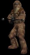 Wookie Warrior