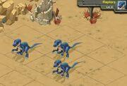 Raptors 8a